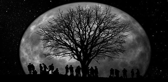 'Y llegamos hasta la luna'