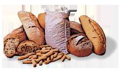 carbono alimentos en los que se encuentra